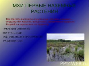 МХИ-ПЕРВЫЕ НАЗЕМНЫЕ РАСТЕНИЯПри переходе растений из водной среды обитания в наз