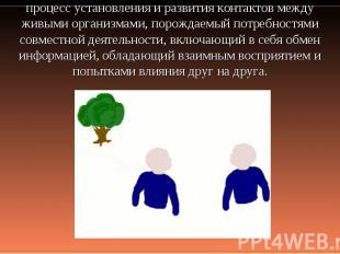процесс установления и развития контактов между живыми организмами, порождаемый