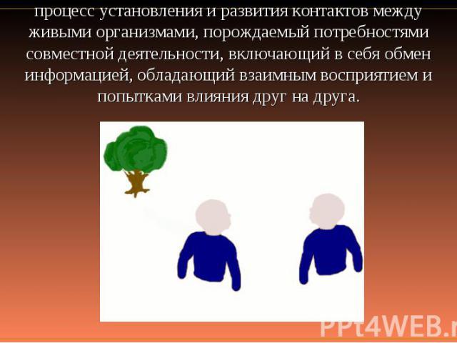 процесс установления и развития контактов между живыми организмами, порождаемый потребностями совместной деятельности, включающий в себя обмен информацией, обладающий взаимным восприятием и попытками влияния друг на друга.