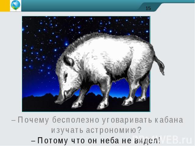 – Почему бесполезно уговаривать кабана изучать астрономию? – Потому что он неба не видел!
