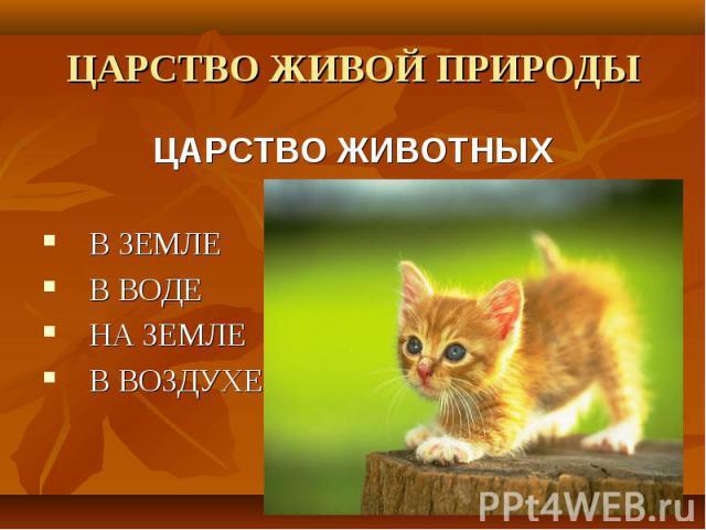ЦАРСТВО ЖИВОЙ ПРИРОДЫЦАРСТВО ЖИВОТНЫХВ ЗЕМЛЕВ ВОДЕНА ЗЕМЛЕВ ВОЗДУХЕ