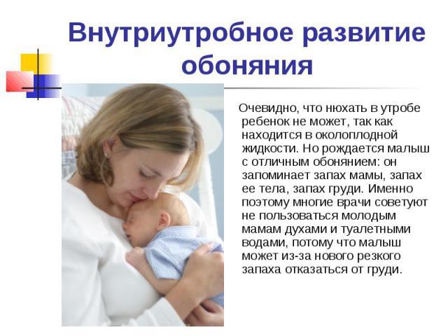 Внутриутробное развитие обоняния Очевидно, что нюхать в утробе ребенок не может, так как находится в околоплодной жидкости. Но рождается малыш с отличным обонянием: он запоминает запах мамы, запах ее тела, запах груди. Именно поэтому многие врачи со…