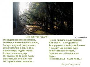 О каждом новом свежем пне,О ветви, сломанной бесцельно,Тоскую я душой смертельно