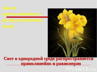 Закон прямолинейного распространения светаСвет в однородной среде распространяет