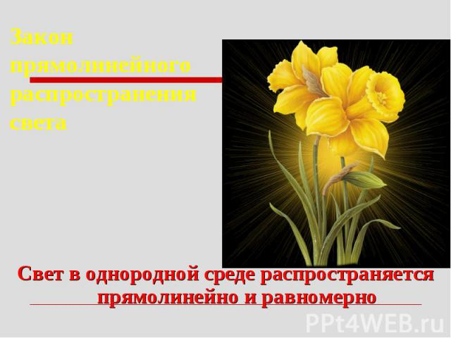 Закон прямолинейного распространения светаСвет в однородной среде распространяется прямолинейно и равномерно