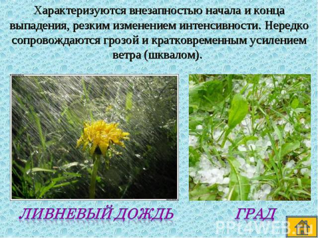 Характеризуются внезапностью начала и конца выпадения, резким изменением интенсивности. Нередко сопровождаются грозой и кратковременным усилением ветра (шквалом).