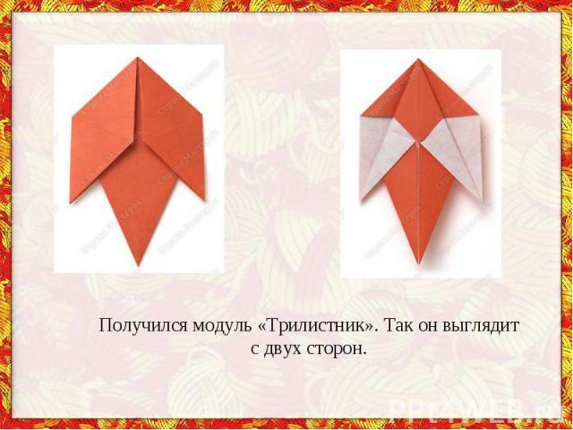 Получился модуль «Трилистник». Так онвыглядит сдвух сторон.