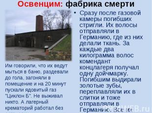 Освенцим: фабрика смертиИм говорили, что их ведут мыться в баню, раздевали до го
