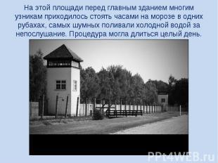 На этой площади перед главным зданием многим узникам приходилось стоять часами н