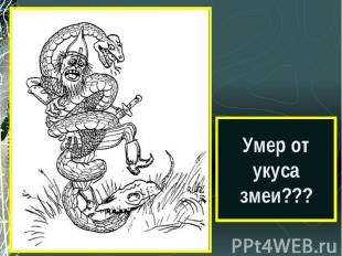 Умер от укуса змеи???