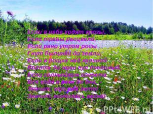 Если в небе ходят грозы,Если травы расцвели,Если рано утром росыГнут былинки до