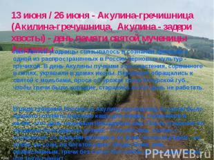 13 июня / 26 июня - Акулина-гречишница (Акилина-гречушница, Акулина - задери хво