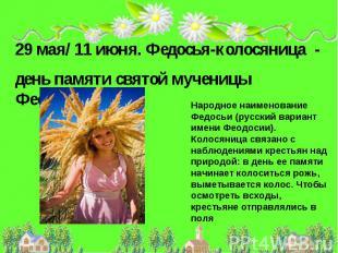 29 мая/ 11 июня. Федосья-колосяница - день памяти святой мученицы Феодосии.Народ