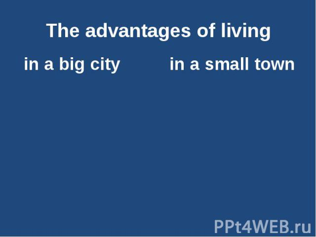 essay about city