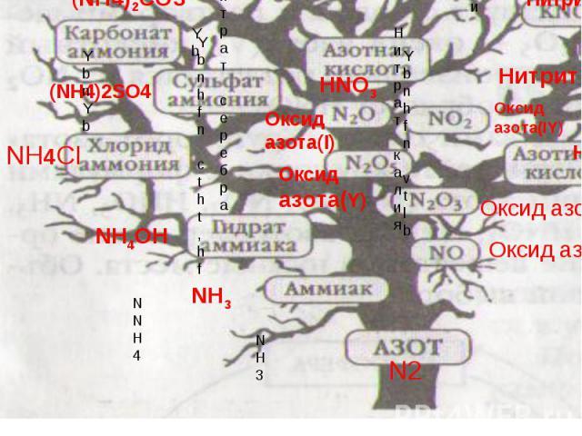 Нитрат серебраNH3