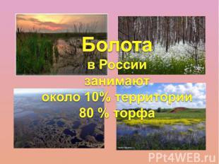 Болота в Россиизанимаютоколо 10% территории80 % торфа