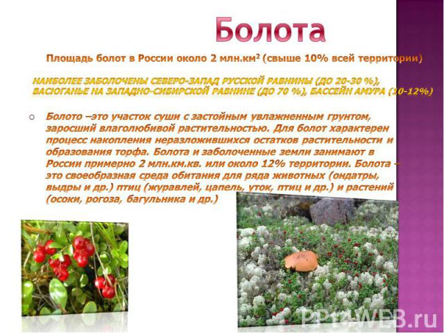 БолотаНаиболее заболочены северо-запад Русской равнины (до 20-30 %), Васюганье на Западно-Сибирской равнине (до 70 %), бассейн Амура (10-12%)Болото –это участок суши с застойным увлажненным грунтом, заросший влаголюбивой растительностью. Для болот х…