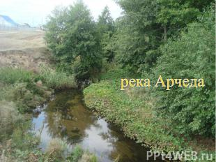 река Арчеда