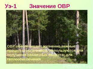 Уэ-1 Значение ОВРОВР обеспечивают жизненно важные процессы организмов. Использую