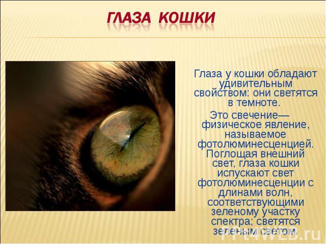 ГЛАЗА КОШКИГлаза у кошки обладают удивительным свойством: они светятся в темноте. Это свечение— физическое явление, называемое фотолюминесценцией. Поглощая внешний свет, глаза кошки испускают свет фотолюминесценции с длинами волн, соответствующими з…