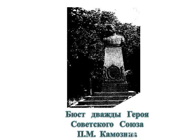 Бюст дважды ГерояСоветского Союза П.М. Камозина