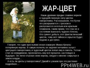 ЖАР-ЦВЕТ Наши древние предки славяне верили в чудодейственную силу цветка папоро