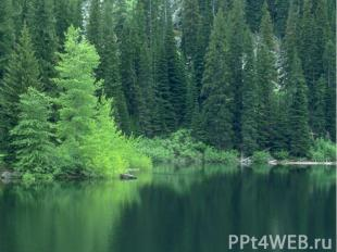Широка страна моя родная.Много в ней лесов, полей и рек.Я другой такой страны не