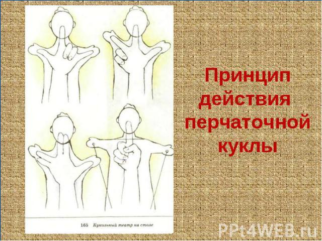 Принципдействия перчаточнойкуклы