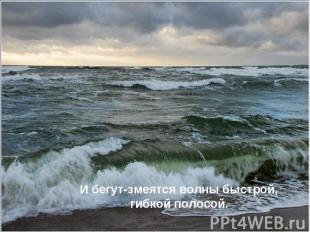 И бегут-змеятся волны быстрой, гибкой полосой.