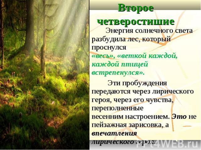 Второе четверостишие Энергия солнечного света разбудила лес, который проснулся «весь», «веткой каждой, каждой птицей встрепенулся». Эти пробуждения передаются через лирического героя, через его чувства, переполненные весенним настроением. Это не пей…