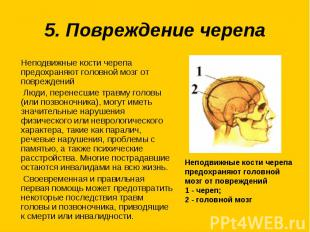 5. Повреждение черепаНеподвижные кости черепа предохраняют головной мозг от повр