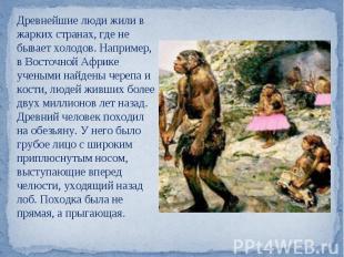Древнейшие люди жили в жарких странах, где не бывает холодов. Например, в Восточ