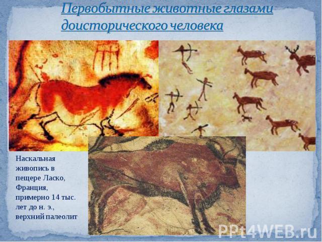 Первобытные животные глазами доисторического человека Наскальная живопись в пещере Ласко, Франция, примерно 14 тыс. лет до н.э., верхний палеолит