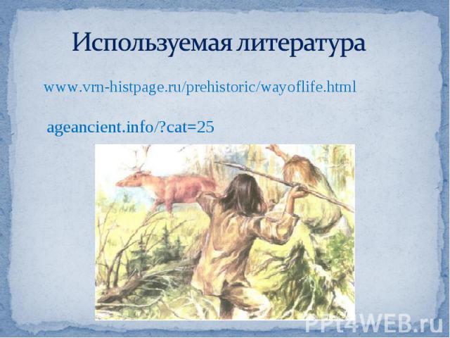 Используемая литература www.vrn-histpage.ru/prehistoric/wayoflife.htmlageancient.info/?cat=25