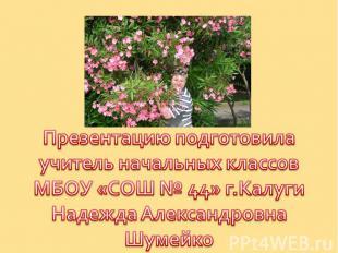 Презентацию подготовилаучитель начальных классовМБОУ «СОШ № 44» г.КалугиНадежда