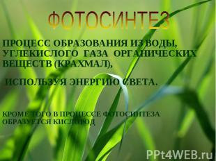 ФОТОСИНТЕЗПРОЦЕСС ОБРАЗОВАНИЯ ИЗ ВОДЫ, УГЛЕКИСЛОГО ГАЗА ОРГАНИЧЕСКИХ ВЕЩЕСТВ (КР