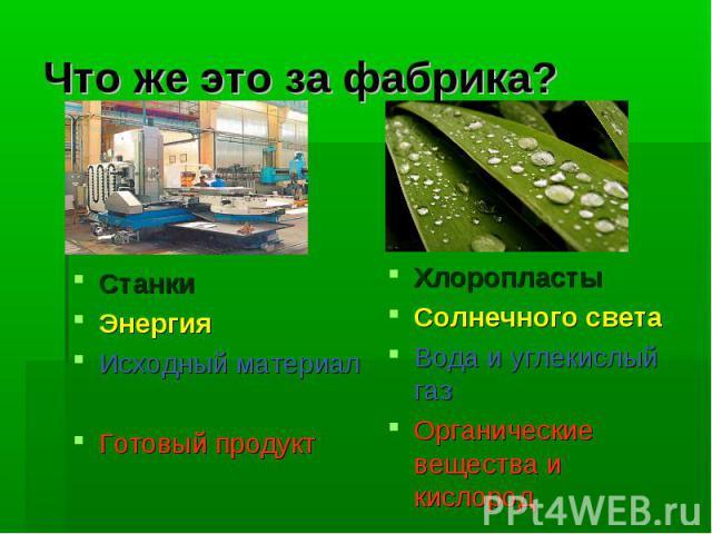 Что же это за фабрика?Станки ЭнергияИсходный материалГотовый продуктХлоропластыСолнечного светаВода и углекислый газОрганические вещества и кислород