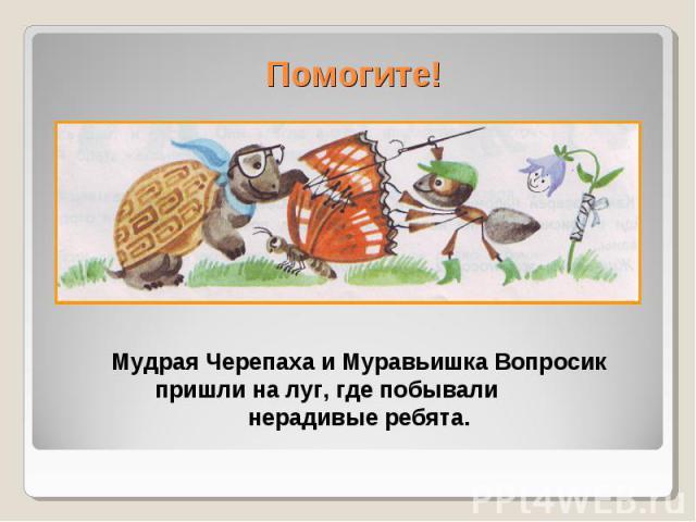 Помогите!Мудрая Черепаха и Муравьишка Вопросик пришли на луг, где побывали нерадивые ребята.