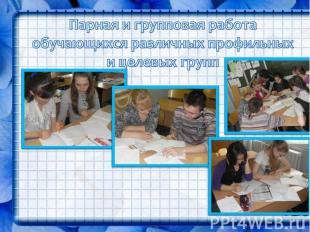 Парная и групповая работа обучающихся различных профильных и целевых групп