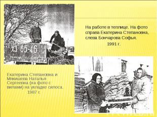 На работе в теплице. На фото справа Екатерина Степановна, слева Бончарова Софья.
