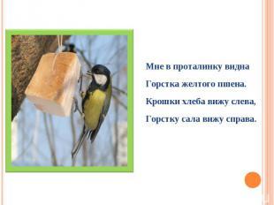 Мне в проталинку виднаГорстка желтого пшена.Крошки хлеба вижу слева,Горстку сала