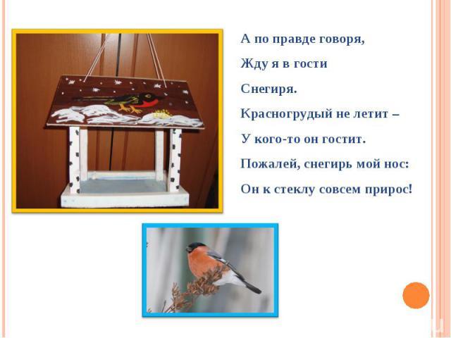 А по правде говоря,Жду я в гостиСнегиря.Красногрудый не летит –У кого-то он гостит.Пожалей, снегирь мой нос:Он к стеклу совсем прирос!