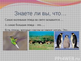 Знаете ли вы, что…Самая маленькая птица на свете называется …А самая большая пти