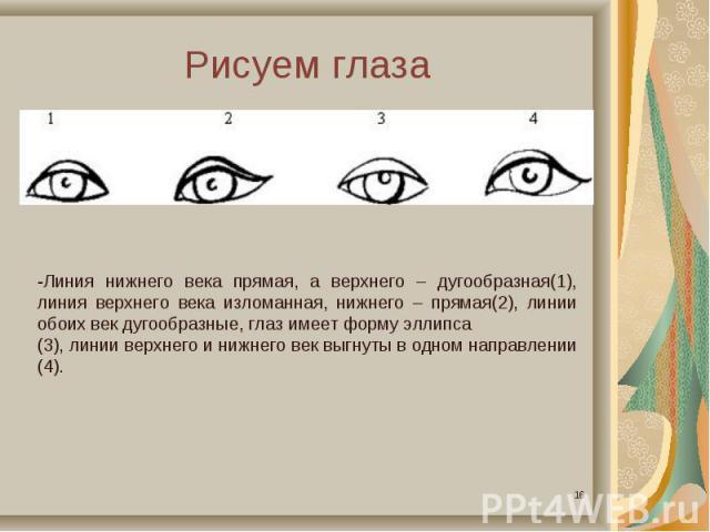 Рисуем глаза-Линия нижнего века прямая, а верхнего – дугообразная(1), линия верхнего века изломанная, нижнего – прямая(2), линии обоих век дугообразные, глаз имеет форму эллипса(3), линии верхнего и нижнего век выгнуты в одном направлении (4).