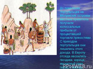 До появления португальцев на Молуккских островах местные правители получали коло