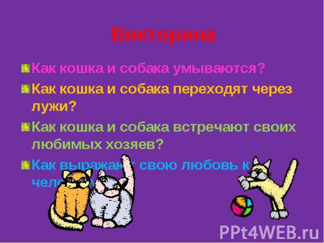 ВикторинаКак кошка и собака умываются?Как кошка и собака переходят через лужи?Как кошка и собака встречают своих любимых хозяев?Как выражают свою любовь к человеку?