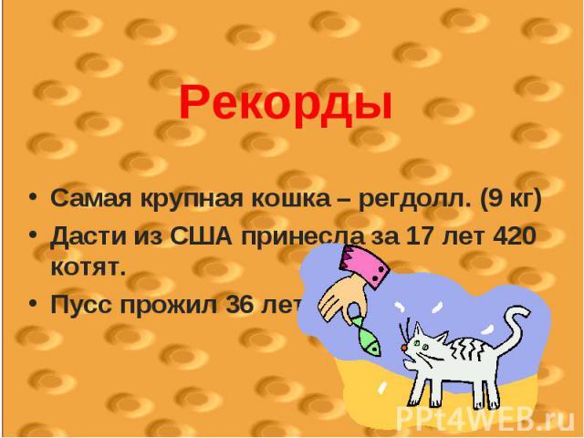 РекордыСамая крупная кошка – регдолл. (9 кг)Дасти из США принесла за 17 лет 420 котят.Пусс прожил 36 лет.