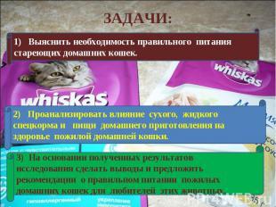 ЗАДАЧИ:1) Выяснить необходимость правильного питания стареющих домашних кошек.2)