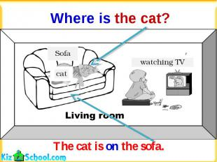 Where is the cat?The cat is on the sofa.