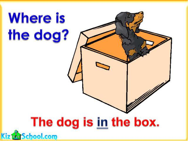 Where is the dog?The dog is in the box.